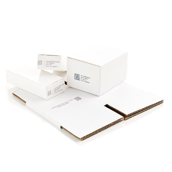 Esempio Stampa Domino Serie Gx Codifica su schermo LCD Codice QR